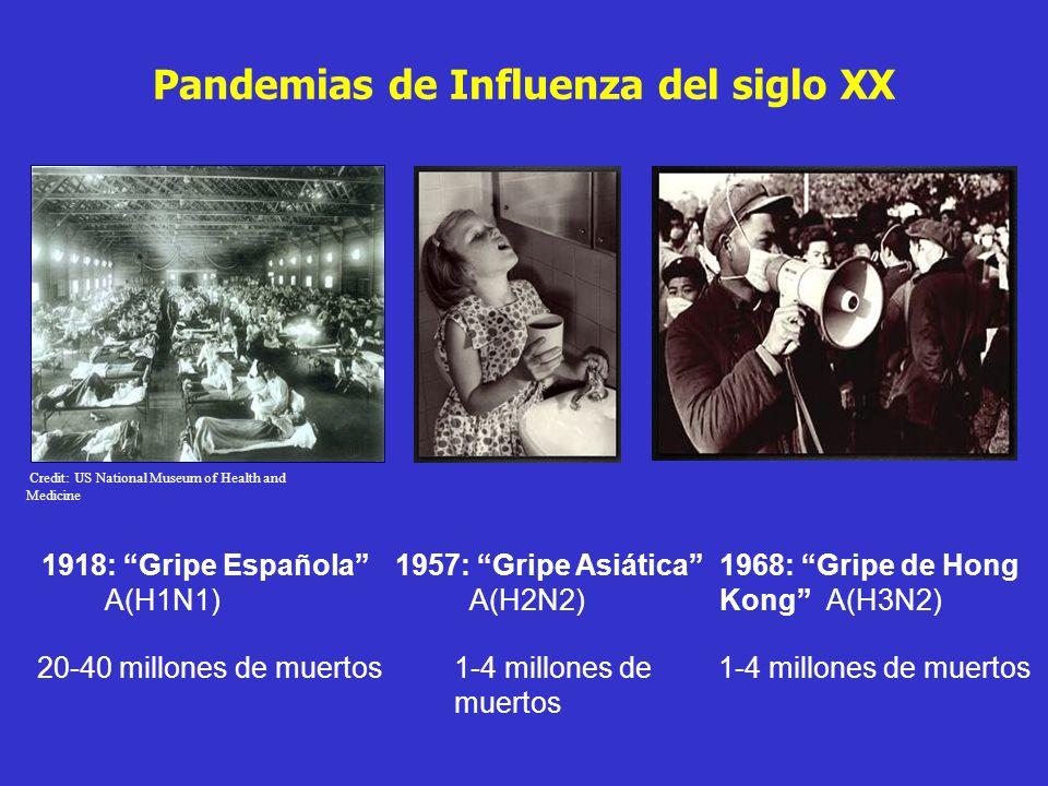 Pandemias de Influenza del siglo XX A(H1N1)A(H2N2)A(H3N2) 1918: Gripe Española1957: Gripe Asiática1968: Gripe de Hong Kong 20-40 millones de muertos1-4 millones de muertos Credit: US National Museum of Health and Medicine