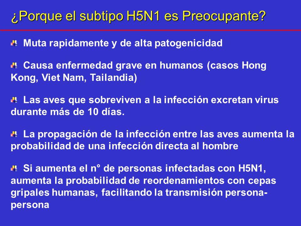 H5N1 EN HUMANOS 328 casos humanos 200 muertos 12 países afectados OMS, 9/2007