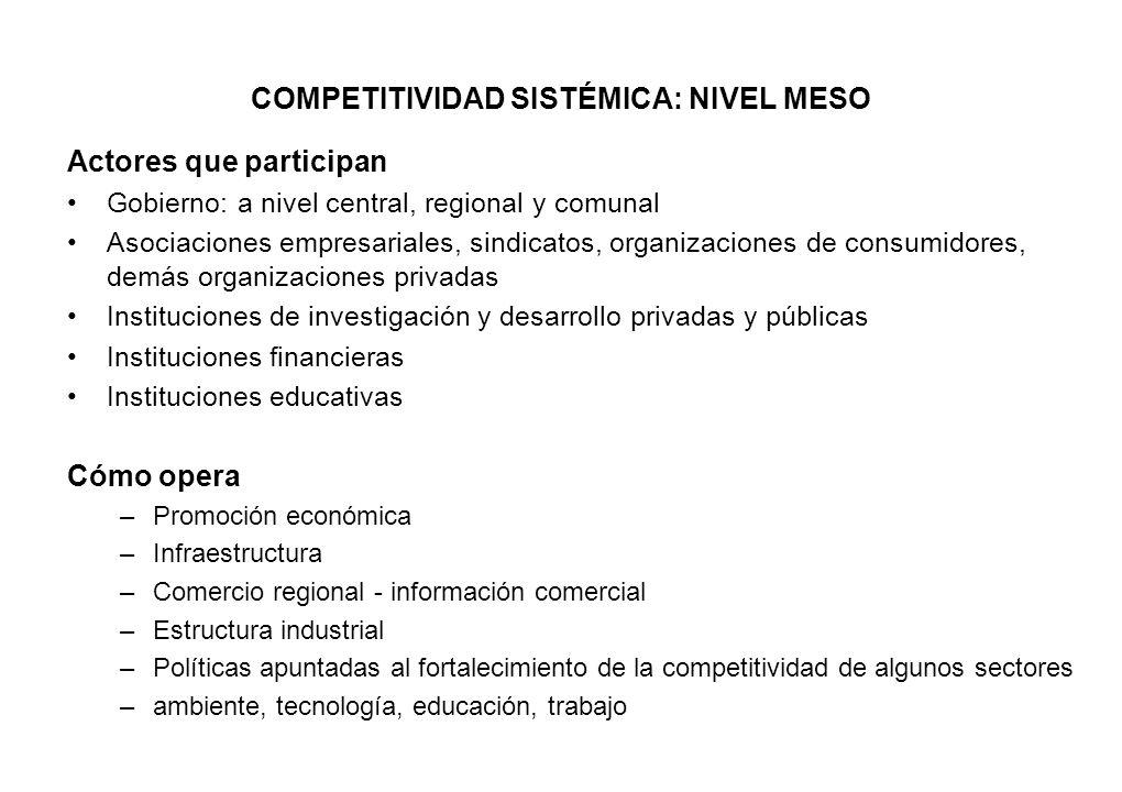 COMPETITIVIDAD SISTÉMICA: NIVEL MESO Actores que participan Gobierno: a nivel central, regional y comunal Asociaciones empresariales, sindicatos, orga