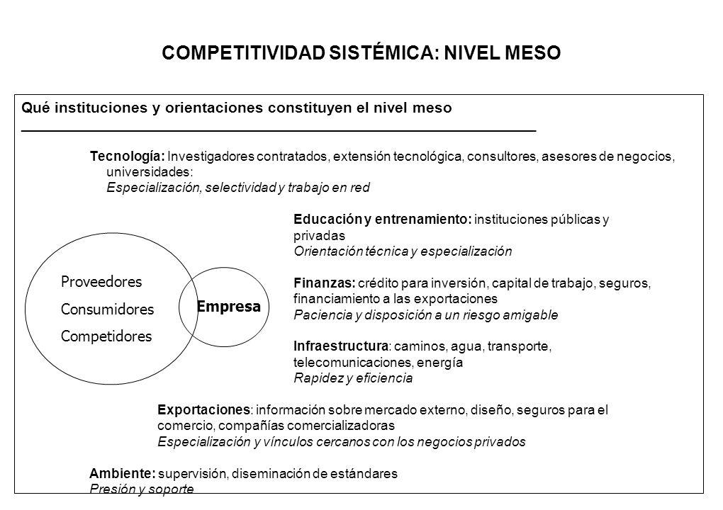 COMPETITIVIDAD SISTÉMICA: NIVEL MESO Qué instituciones y orientaciones constituyen el nivel meso _____________________________________________________