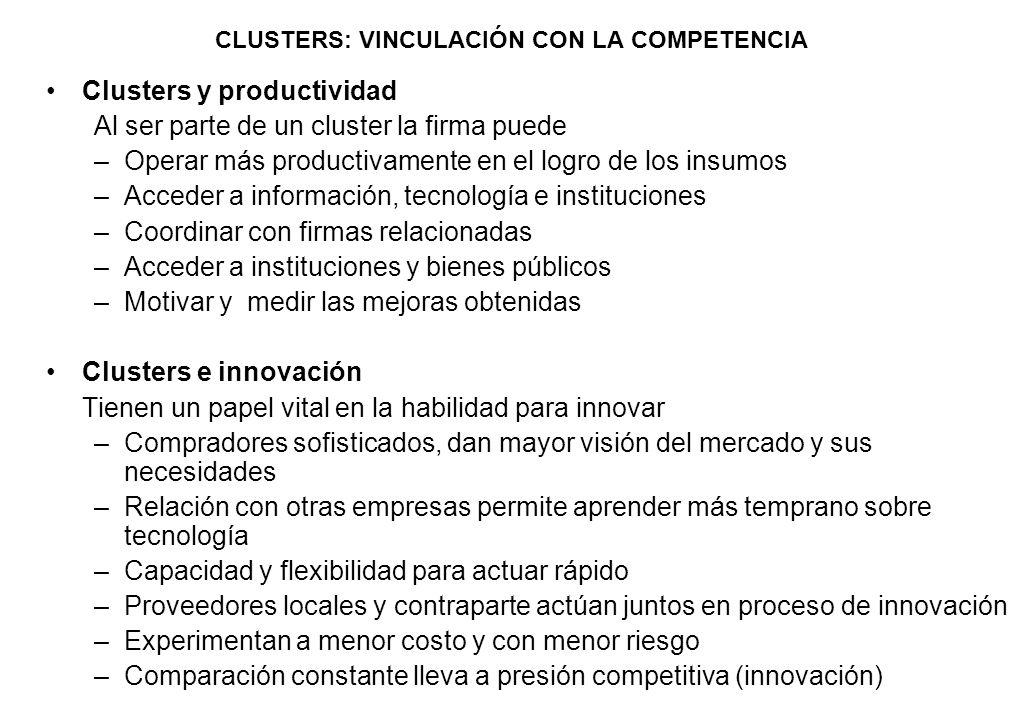 CLUSTERS: VINCULACIÓN CON LA COMPETENCIA Clusters y productividad Al ser parte de un cluster la firma puede –Operar más productivamente en el logro de