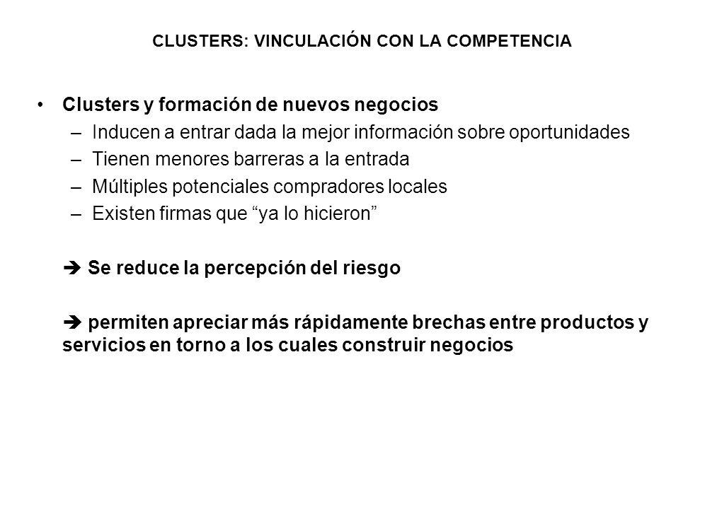 CLUSTERS: VINCULACIÓN CON LA COMPETENCIA Clusters y formación de nuevos negocios –Inducen a entrar dada la mejor información sobre oportunidades –Tien
