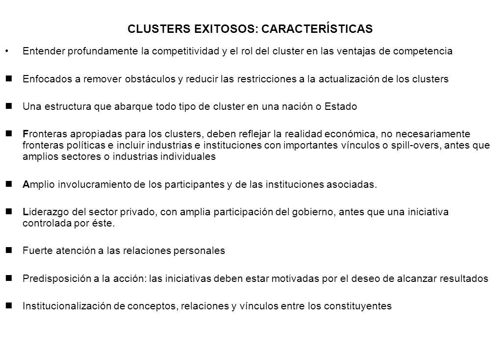 CLUSTERS EXITOSOS: CARACTERÍSTICAS Entender profundamente la competitividad y el rol del cluster en las ventajas de competencia nEnfocados a remover o
