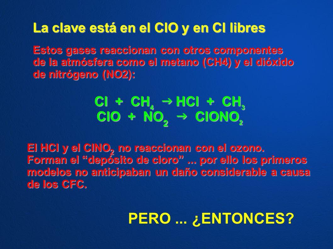 La clave está en el ClO y en Cl libres Estos gases reaccionan con otros componentes de la atmósfera como el metano (CH4) y el dióxido de nitrógeno (NO