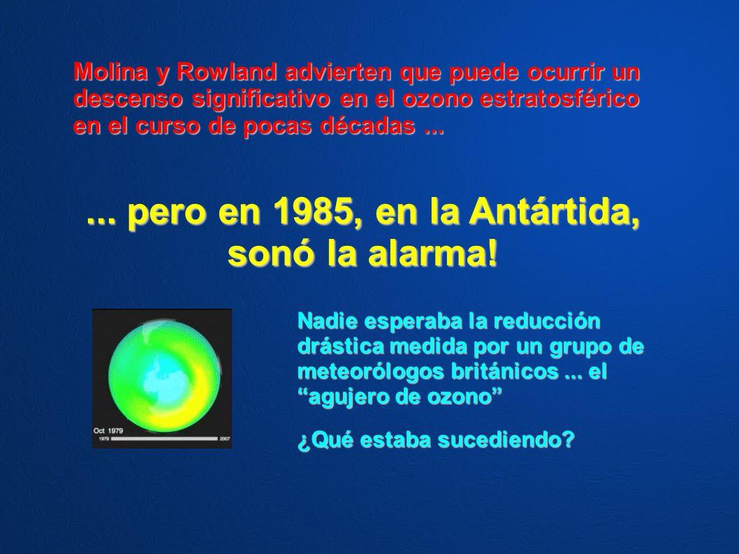 Molina y Rowland advierten que puede ocurrir un descenso significativo en el ozono estratosférico en el curso de pocas décadas...... pero en 1985, en