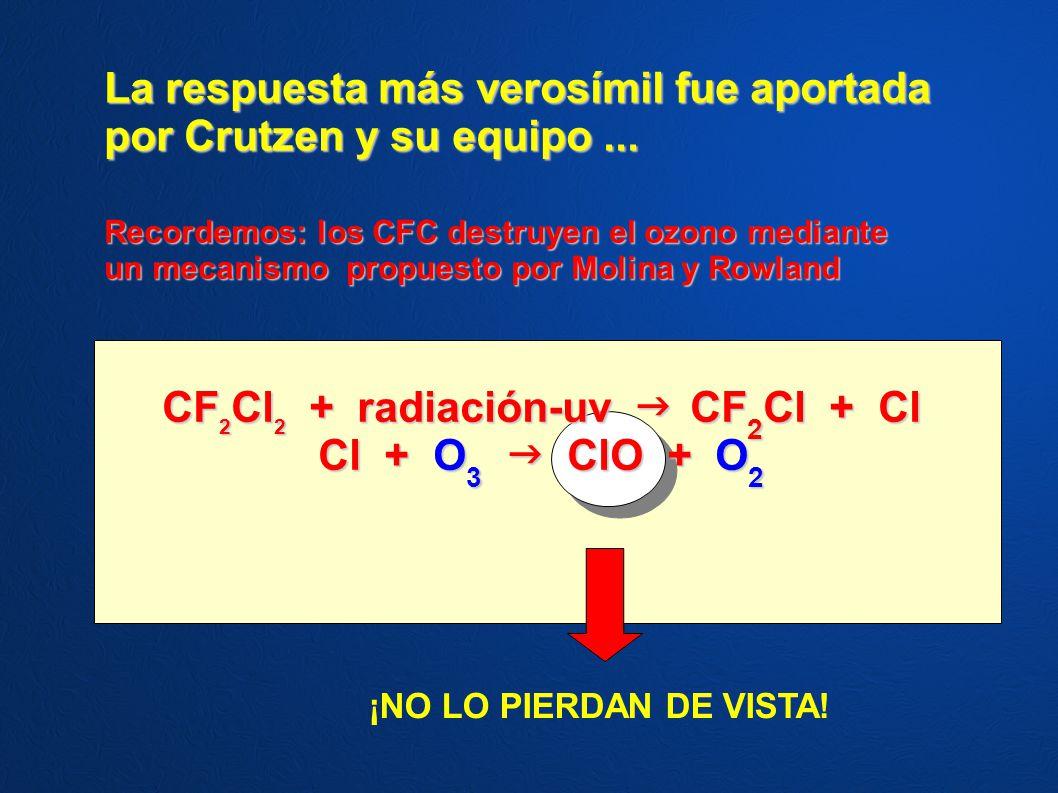 La respuesta más verosímil fue aportada por Crutzen y su equipo... Recordemos: los CFC destruyen el ozono mediante un mecanismo propuesto por Molina y