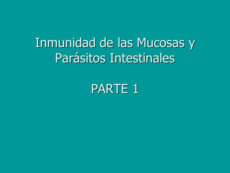 Inducción de respuestas mucosas.