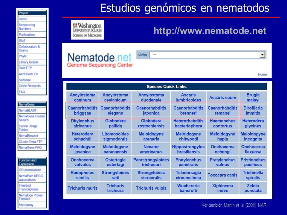 Estudios genómicos en nematodos http://www.nematode.net Ver también Martin et al (2009) NAR