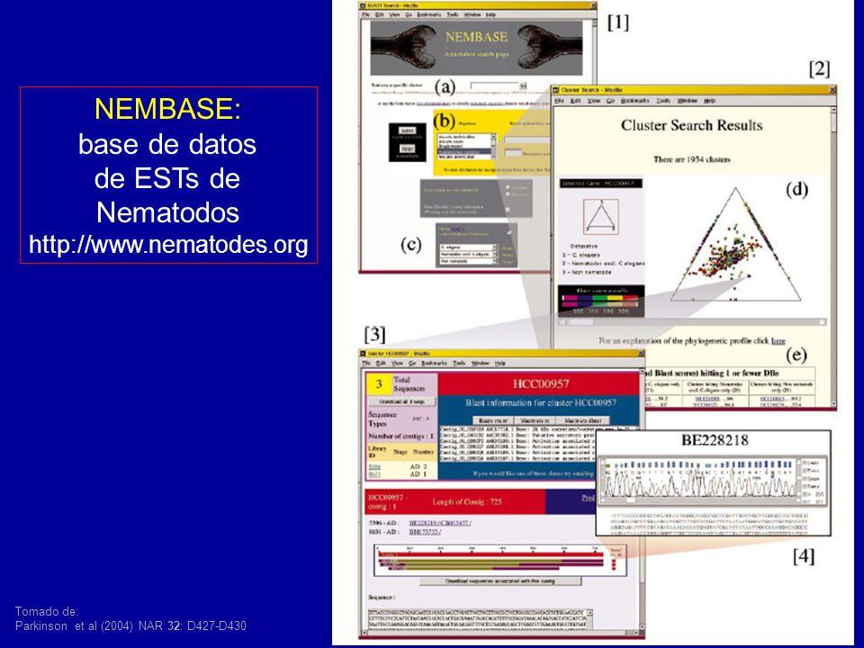 NEMBASE: base de datos de ESTs de Nematodos http://www.nematodes.org Tomado de: Parkinson et al (2004) NAR 32: D427-D430