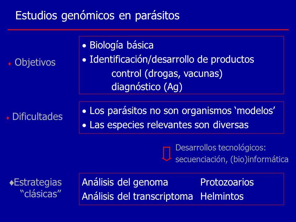 Estudios genómicos en parásitos Biología básica Identificación/desarrollo de productos control (drogas, vacunas) diagnóstico (Ag) Objetivos Dificultad
