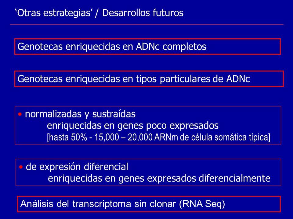 Otras estrategias / Desarrollos futuros Genotecas enriquecidas en tipos particulares de ADNc normalizadas y sustraídas enriquecidas en genes poco expr