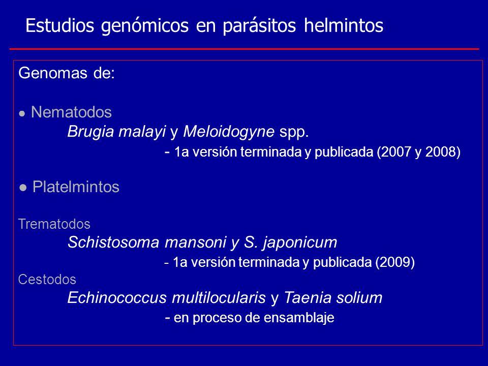 Estudios genómicos en parásitos helmintos Genomas de: Nematodos Brugia malayi y Meloidogyne spp. - 1a versión terminada y publicada (2007 y 2008) Plat
