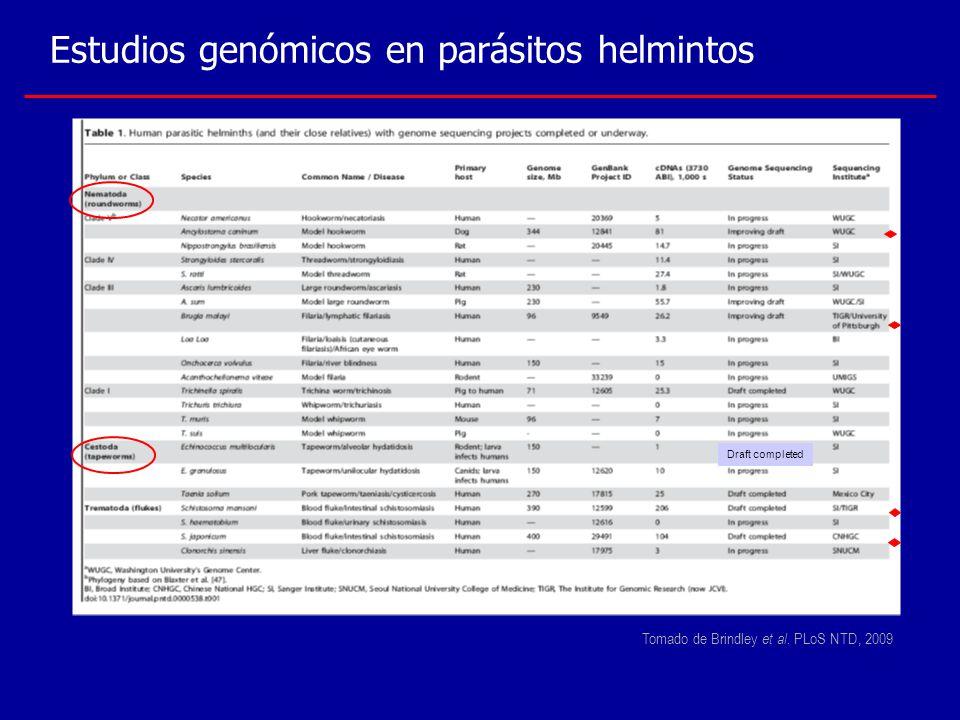 Estudios genómicos en parásitos helmintos Draft completed Tomado de Brindley et al. PLoS NTD, 2009
