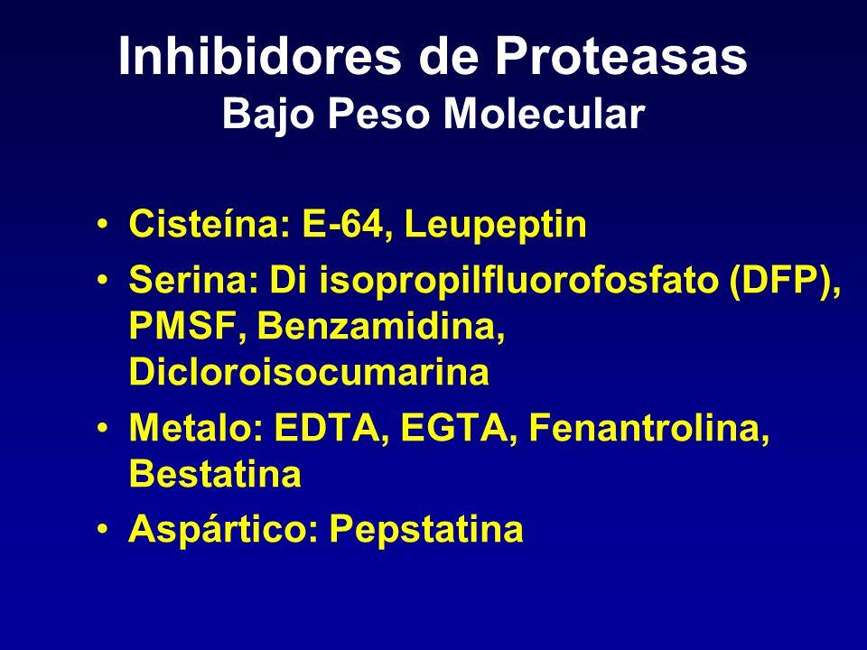 Inhibidores de Proteasas Bajo Peso Molecular Cisteína: E-64, Leupeptin Serina: Di isopropilfluorofosfato (DFP), PMSF, Benzamidina, Dicloroisocumarina