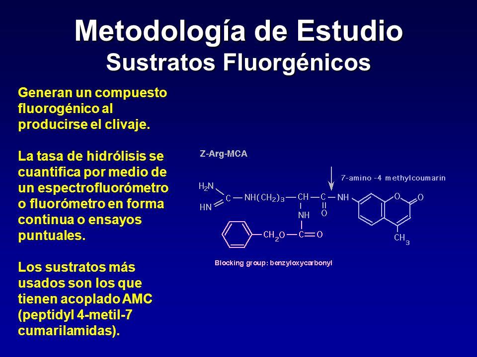 Metodología de Estudio Sustratos Fluorgénicos Generan un compuesto fluorogénico al producirse el clivaje. La tasa de hidrólisis se cuantifica por medi