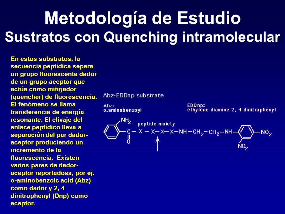 Metodología de Estudio Sustratos con Quenching intramolecular En estos substratos, la secuencia peptídica separa un grupo fluorescente dador de un gru