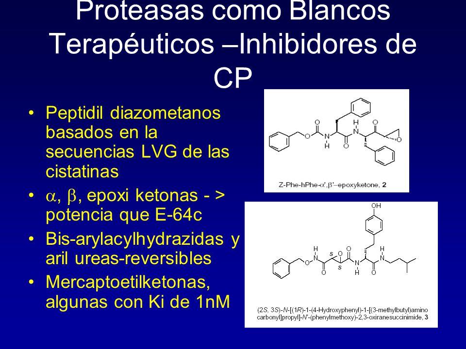 Proteasas como Blancos Terapéuticos –Inhibidores de CP Peptidil diazometanos basados en la secuencias LVG de las cistatinas,, epoxi ketonas - > potenc