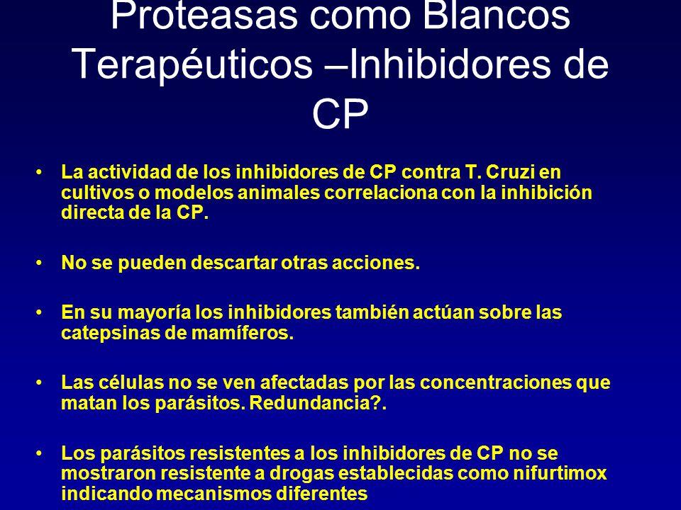 Proteasas como Blancos Terapéuticos –Inhibidores de CP La actividad de los inhibidores de CP contra T. Cruzi en cultivos o modelos animales correlacio