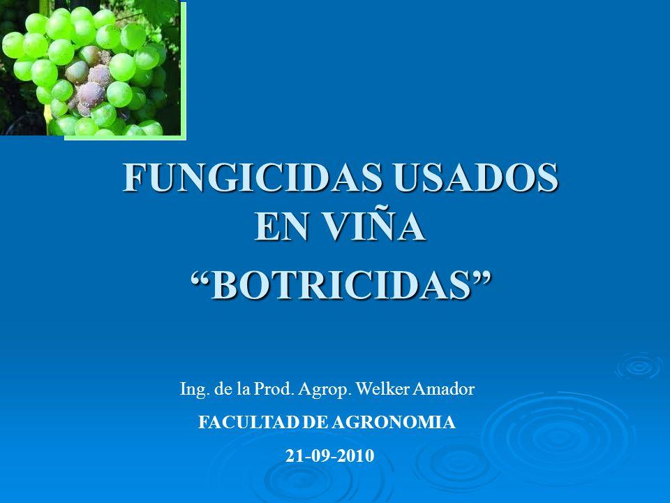 FUNGICIDAS USADOS EN VIÑA BOTRICIDAS Ing. de la Prod. Agrop. Welker Amador FACULTAD DE AGRONOMIA 21-09-2010