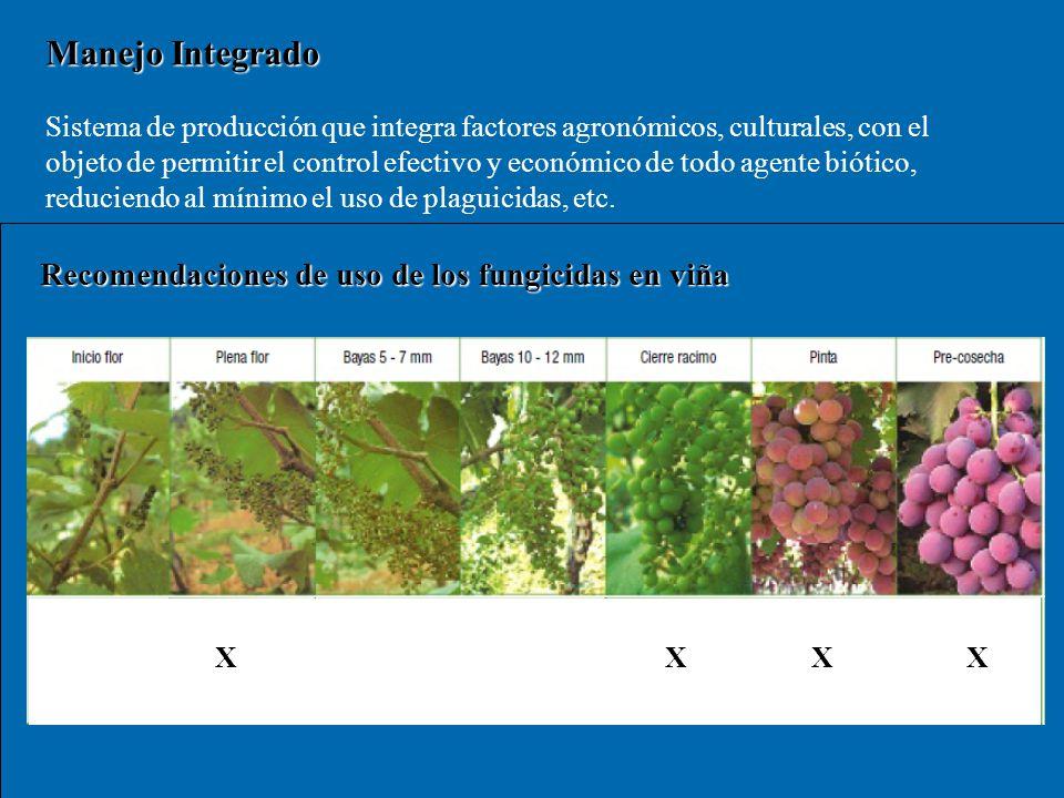 Manejo Integrado Sistema de producción que integra factores agronómicos, culturales, con el objeto de permitir el control efectivo y económico de todo