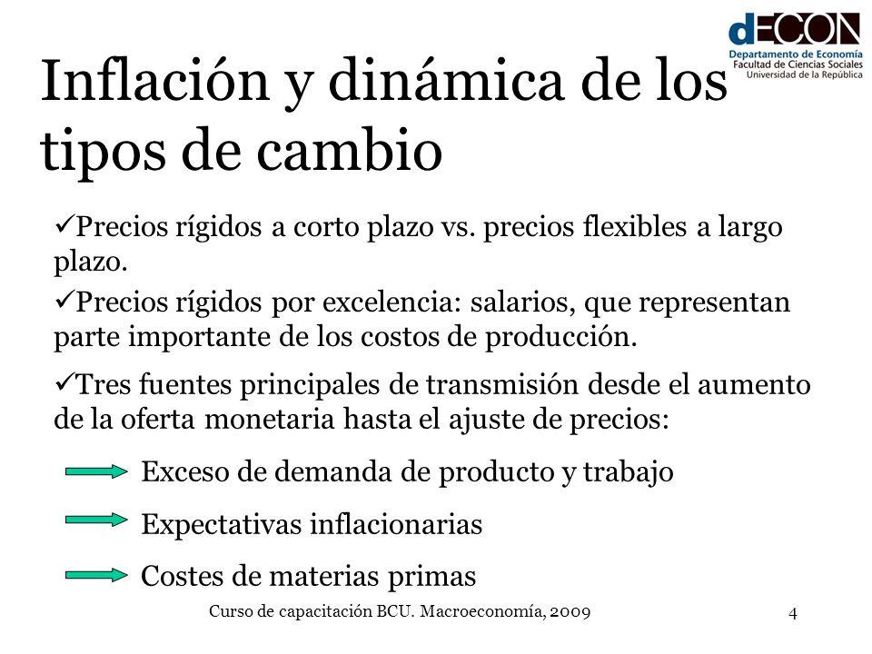Curso de capacitación BCU. Macroeconomía, 20094 Inflación y dinámica de los tipos de cambio Precios rígidos a corto plazo vs. precios flexibles a larg