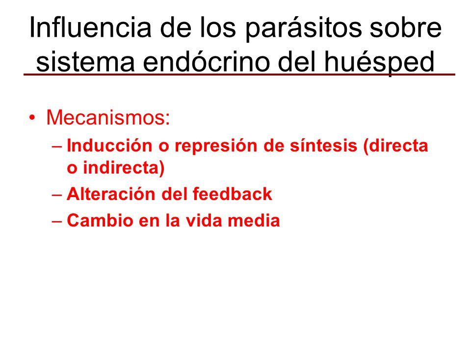 Influencia de los parásitos sobre sistema endócrino del huésped Mecanismos: –Inducción o represión de síntesis (directa o indirecta) –Alteración del feedback –Cambio en la vida media