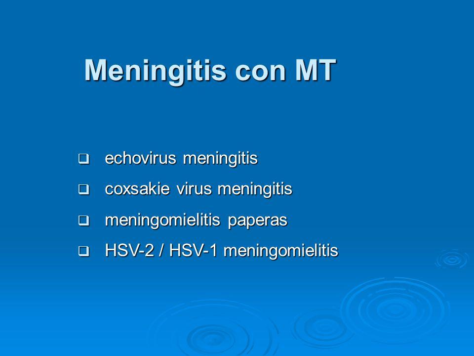 Meningitis con MT echovirus meningitis echovirus meningitis coxsakie virus meningitis coxsakie virus meningitis meningomielitis paperas meningomielitis paperas HSV-2 / HSV-1 meningomielitis HSV-2 / HSV-1 meningomielitis