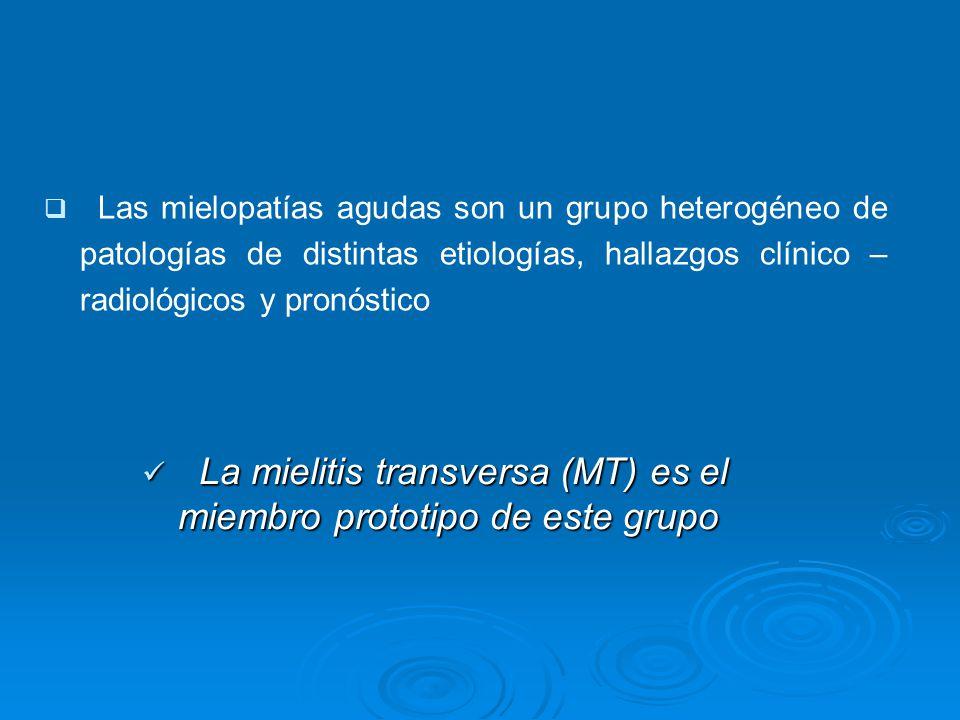 Las mielopatías agudas son un grupo heterogéneo de patologías de distintas etiologías, hallazgos clínico – radiológicos y pronóstico La mielitis transversa (MT) es el miembro prototipo de este grupo La mielitis transversa (MT) es el miembro prototipo de este grupo