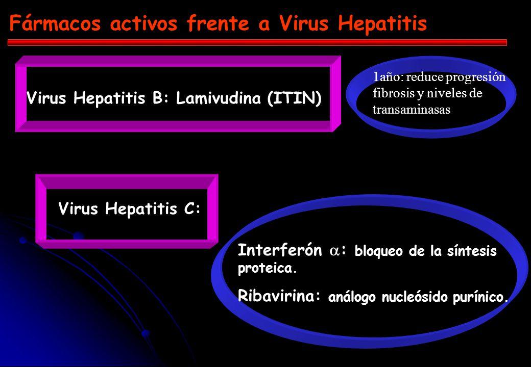 Replicación VHB +_ 1 ARN pregenómico ARNm + _ Intermediario ARN-ADN 3 2 4 ADNccc TR LAMIVUDINA