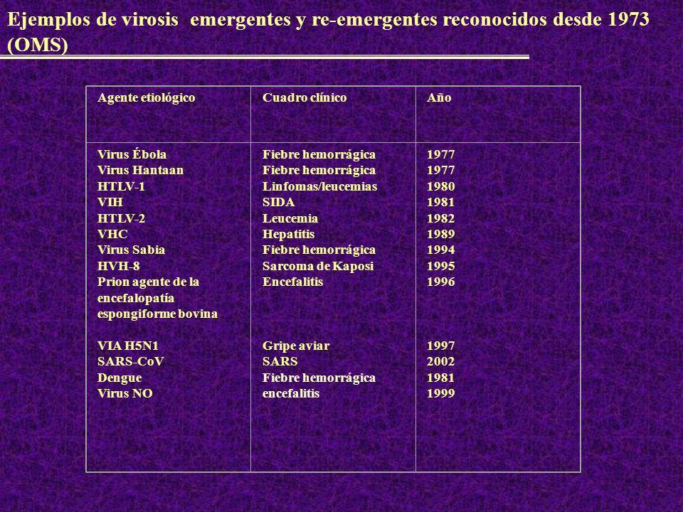 Factores vinculados con la aparición y reconocimiento de EE y E RE 1.Investigación.