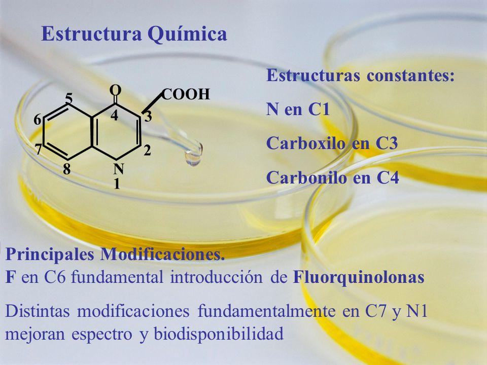 Estructura Química 4 N 1N 1 O 2 3 5 6 7 8 COOH Estructuras constantes: N en C1 Carboxilo en C3 Carbonilo en C4 Principales Modificaciones. F en C6 fun