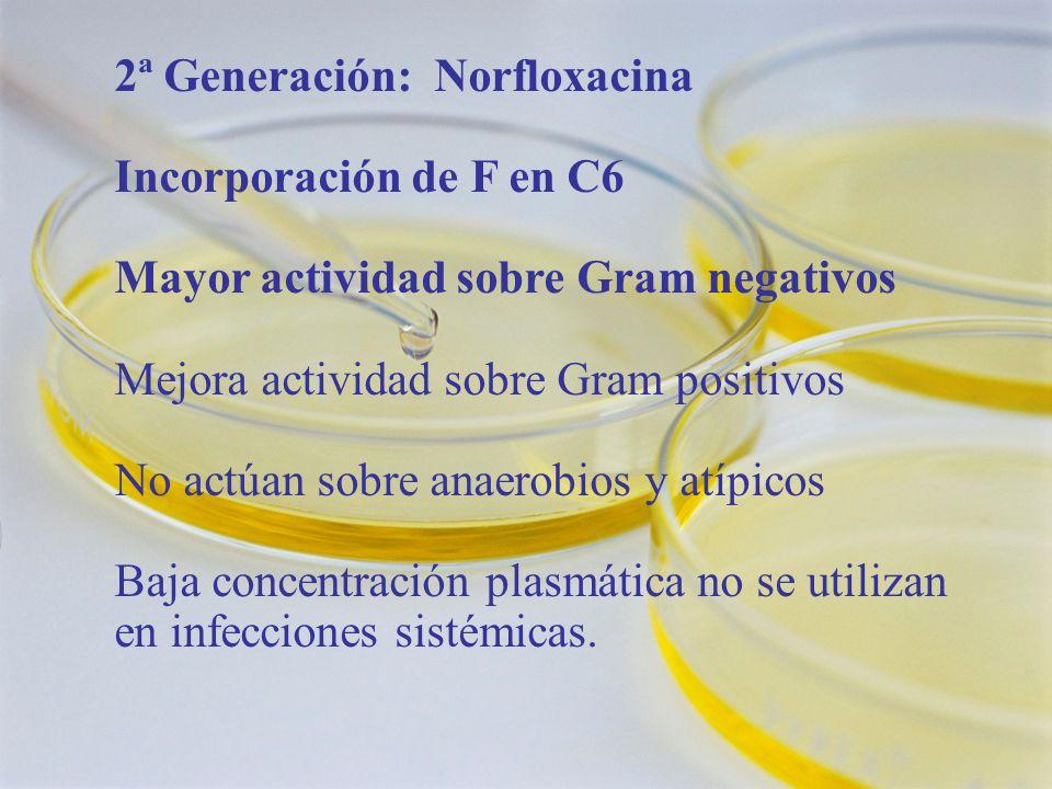 2ª Generación: Norfloxacina Incorporación de F en C6 Mayor actividad sobre Gram negativos Mejora actividad sobre Gram positivos No actúan sobre anaerobios y atípicos Baja concentración plasmática no se utilizan en infecciones sistémicas.