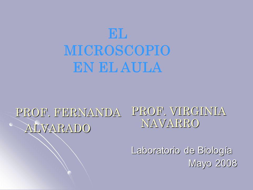 PROF. FERNANDA ALVARADO PROF. VIRGINIA NAVARRO Laboratorio de Biología Mayo 2008 Mayo 2008 EL MICROSCOPIO EN EL AULA