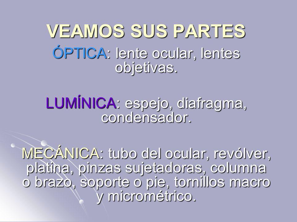 VEAMOS SUS PARTES ÓPTICA: lente ocular, lentes objetivas.