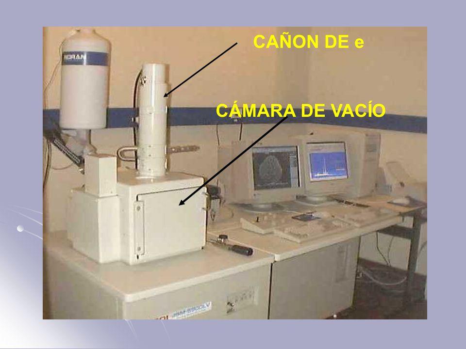 CÁMARA DE VACÍO CAÑON DE e
