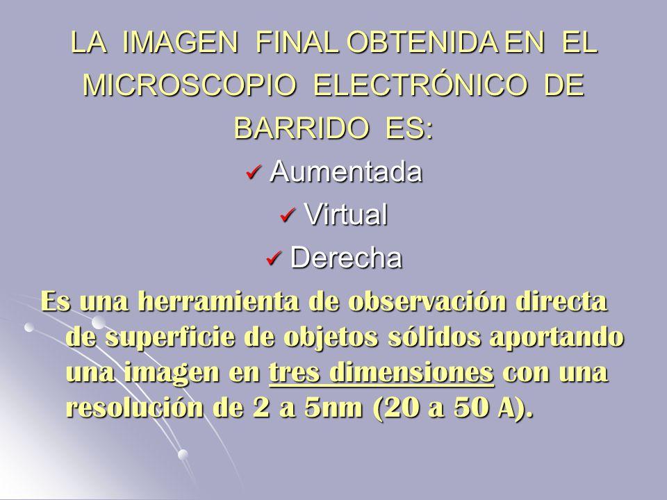 LA IMAGEN FINAL OBTENIDA EN EL MICROSCOPIO ELECTRÓNICO DE BARRIDO ES: Aumentada Aumentada Virtual Virtual Derecha Derecha Es una herramienta de observación directa de superficie de objetos sólidos aportando una imagen en tres dimensiones con una resolución de 2 a 5nm (20 a 50 A).