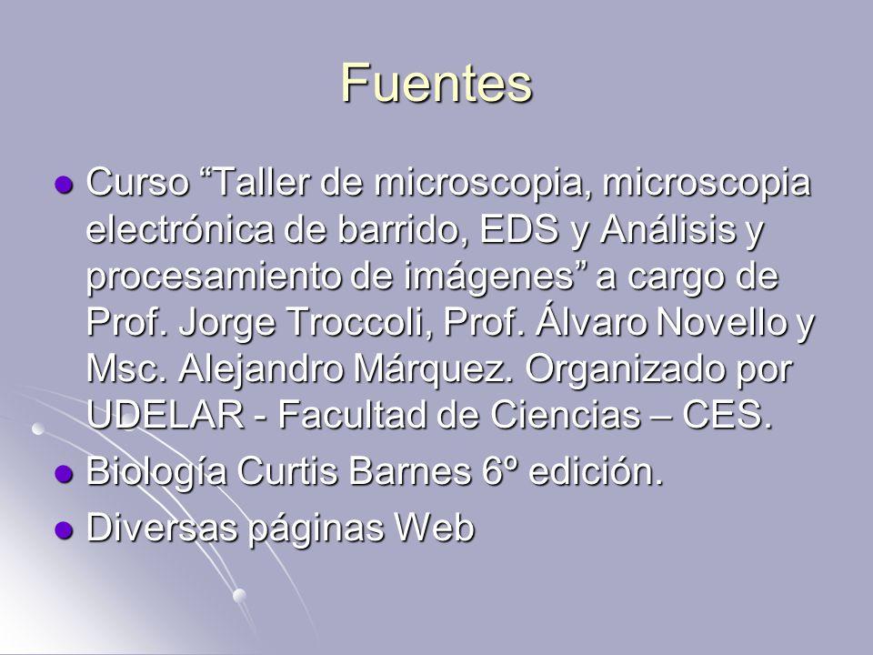 Fuentes Curso Taller de microscopia, microscopia electrónica de barrido, EDS y Análisis y procesamiento de imágenes a cargo de Prof.