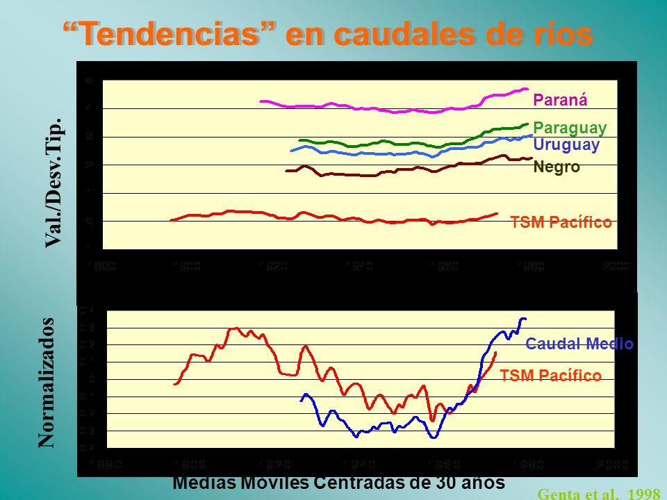 Genta et al, 1998 Medias Móviles Centradas de 30 años Paraná Paraguay Uruguay Negro TSM Pacífico Caudal Medio Normalizados Val./Desv.Tip.