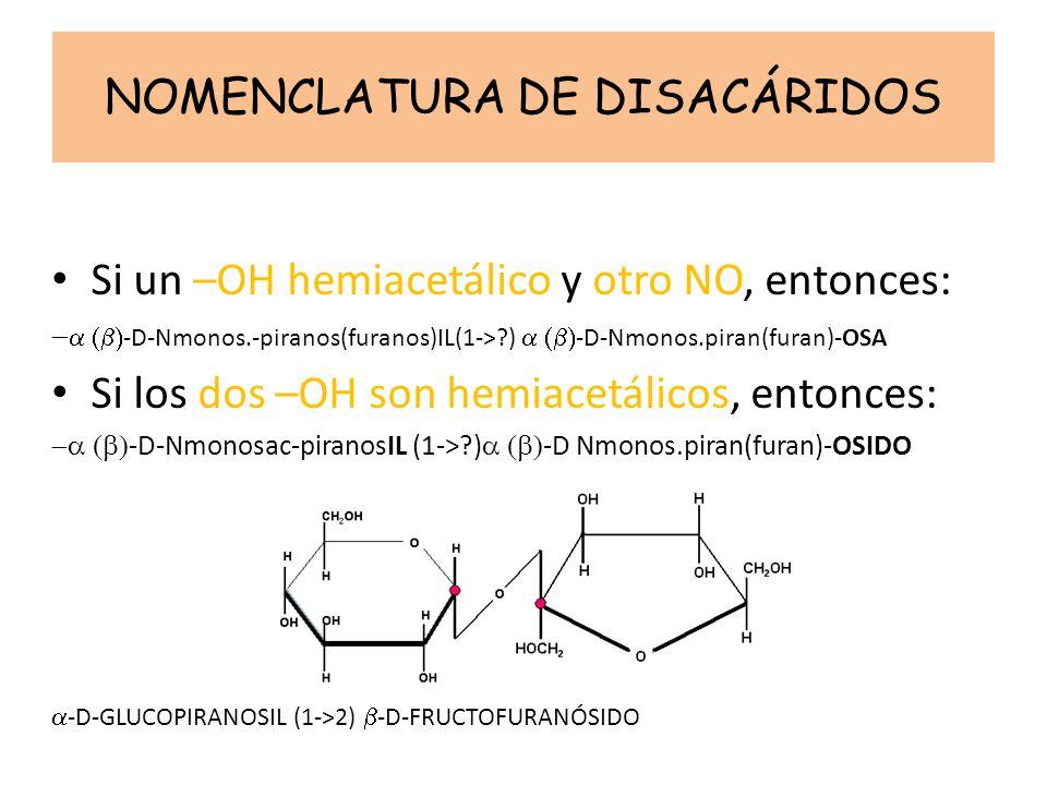 NOMENCLATURA DE DISACÁRIDOS Si un –OH hemiacetálico y otro NO, entonces: -D-Nmonos.-piranos(furanos)IL(1->?) -D-Nmonos.piran(furan)-OSA Si los dos –OH son hemiacetálicos, entonces: -D-Nmonosac-piranosIL (1->?) -D Nmonos.piran(furan)-OSIDO -D-GLUCOPIRANOSIL (1->2) -D-FRUCTOFURANÓSIDO