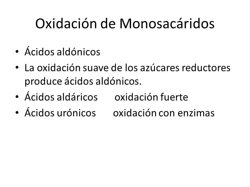 Oxidación de Monosacáridos Ácidos aldónicos La oxidación suave de los azúcares reductores produce ácidos aldónicos.