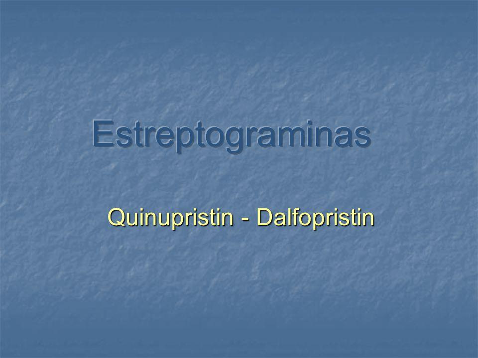 Estreptograminas Grupo de antibióticos formados por 2 componentes: estreptogramina a y estreptogramina b Quinupristin-dalfopristin (Synercid) combinación hidrosoluble en proporción 30:70.