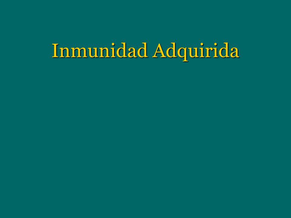 Inmunidad Adquirida