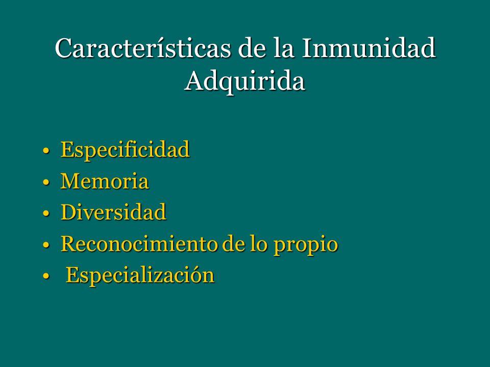 Características de la Inmunidad Adquirida EspecificidadEspecificidad MemoriaMemoria DiversidadDiversidad Reconocimiento de lo propioReconocimiento de