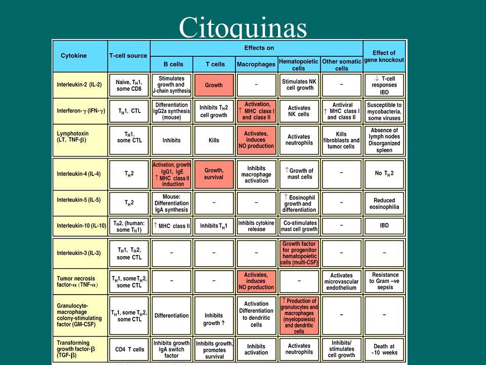 Citoquinas