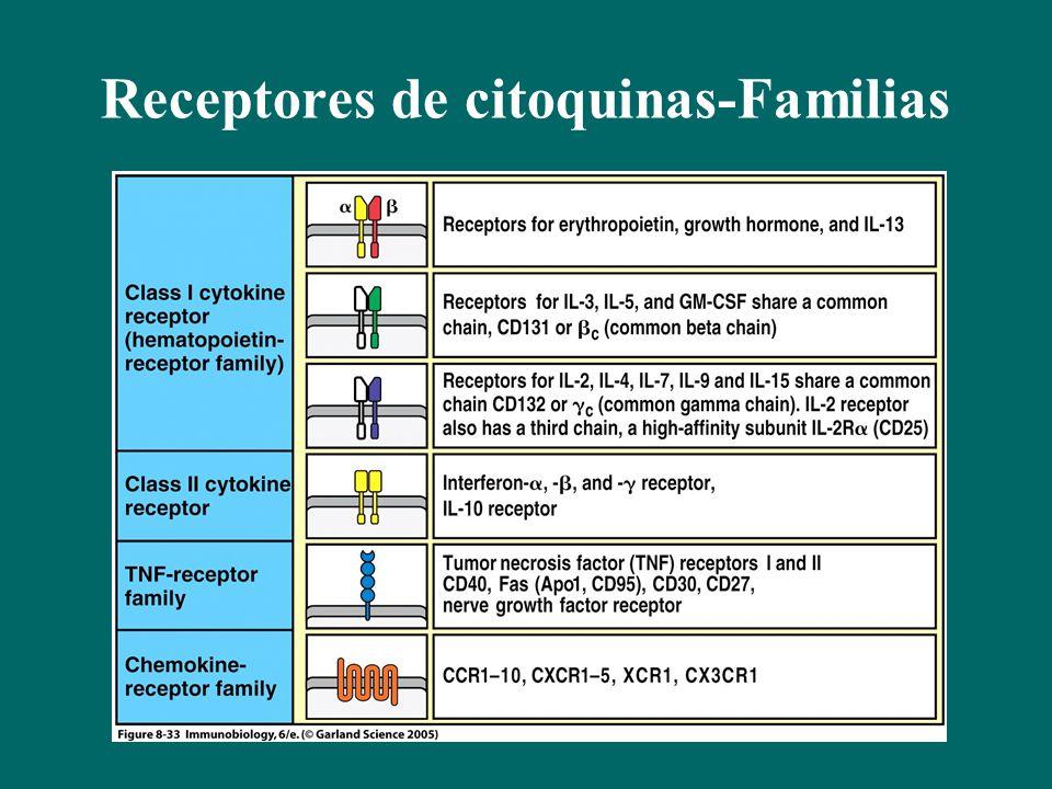 Receptores de citoquinas-Familias