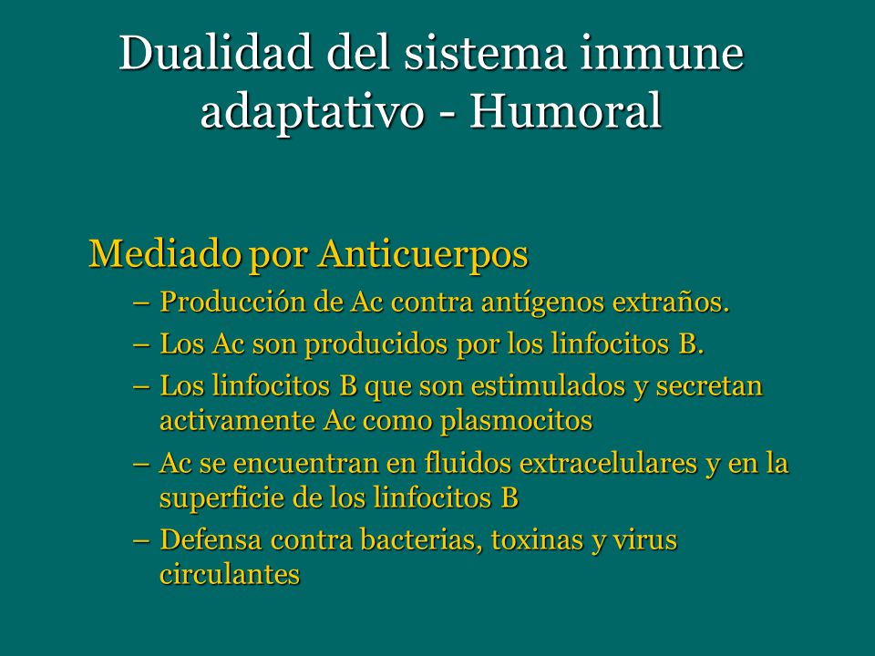 Dualidad del sistema inmune adaptativo - Humoral Mediado por Anticuerpos –Producción de Ac contra antígenos extraños. –Los Ac son producidos por los l
