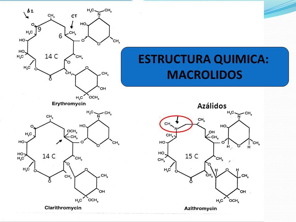 Eritromicina: mecanismo de acción