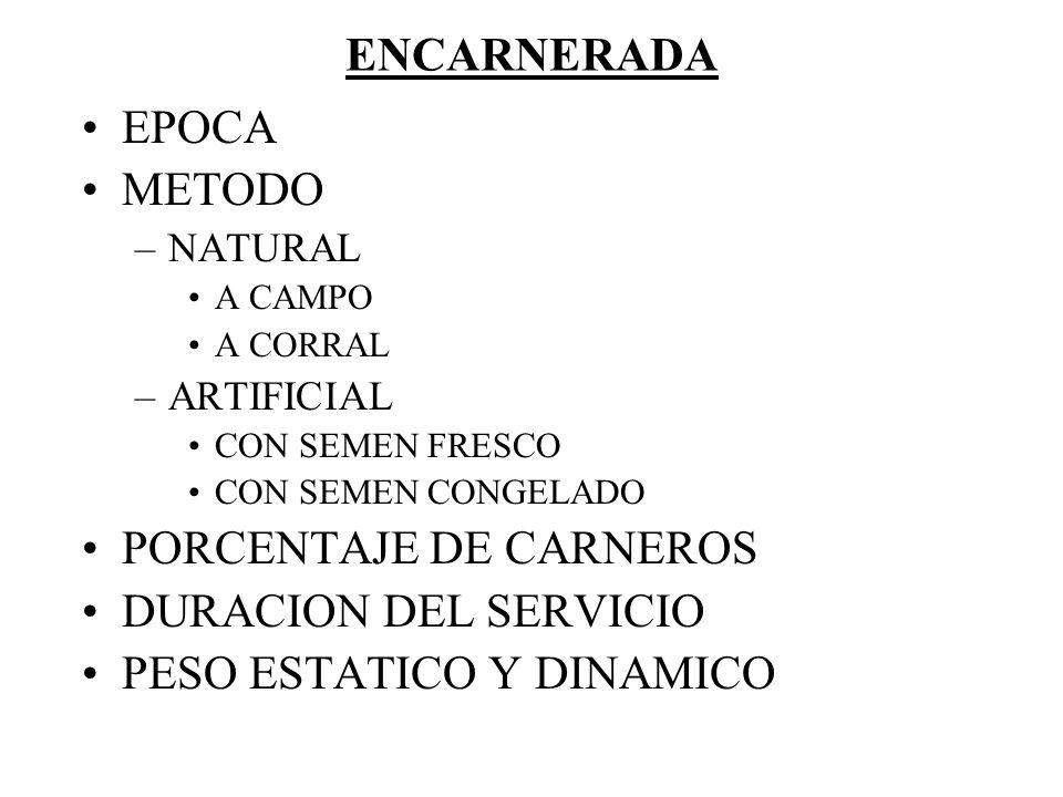 ENCARNERADA EPOCA METODO –NATURAL A CAMPO A CORRAL –ARTIFICIAL CON SEMEN FRESCO CON SEMEN CONGELADO PORCENTAJE DE CARNEROS DURACION DEL SERVICIO PESO