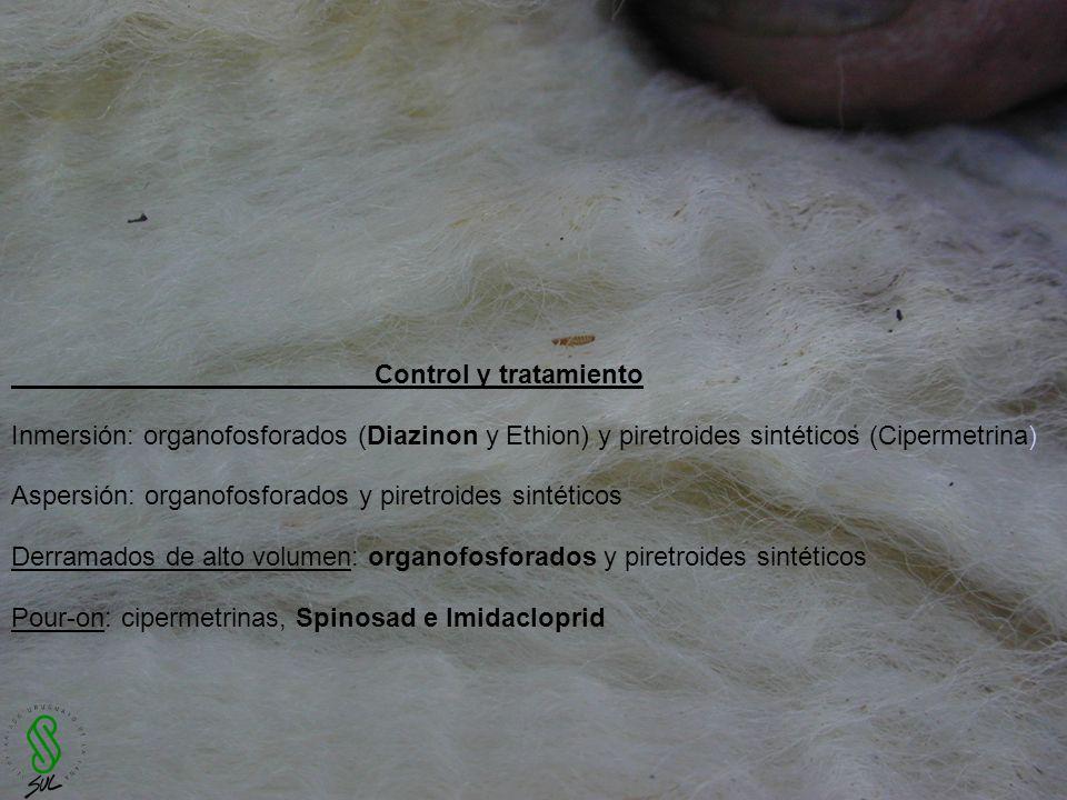 Control y tratamiento Inmersión: organofosforados (Diazinon y Ethion) y piretroides sintéticos (Cipermetrina) Aspersión: organofosforados y piretroide