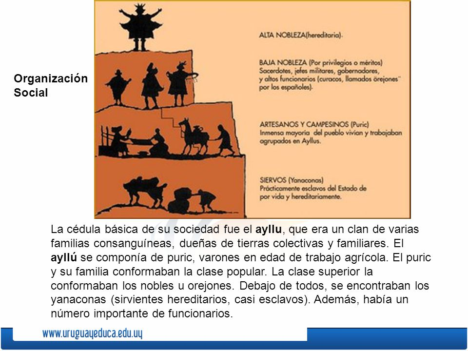 La cédula básica de su sociedad fue el ayllu, que era un clan de varias familias consanguíneas, dueñas de tierras colectivas y familiares. El ayllú se